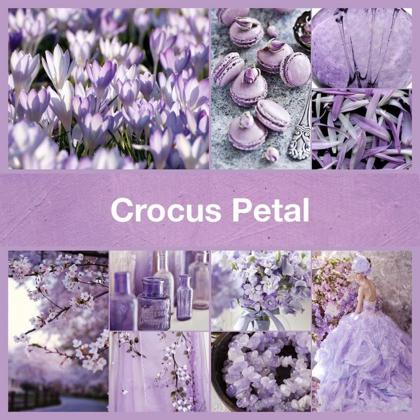 Inspirational collage Crocus Petal by TheNailPolishHoarder