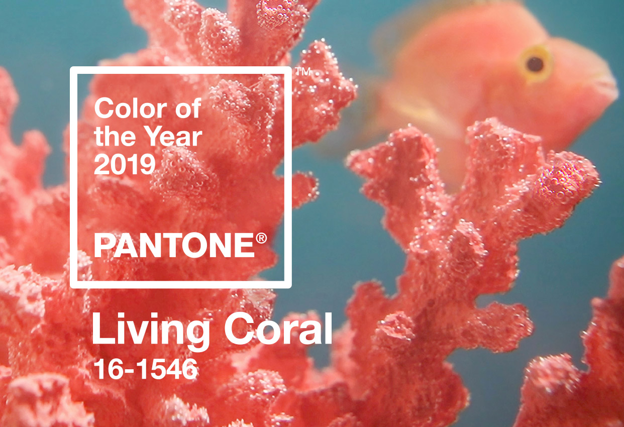 Pantone Living Coral Color of the Year 2019 (image by Pantone)