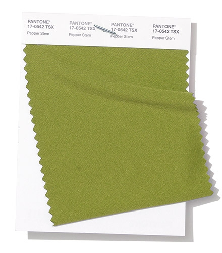 Pantone swatch Pepper Stem