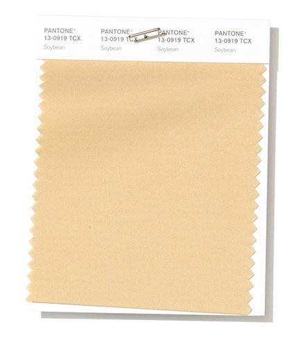 Pantone Swatch Soybean