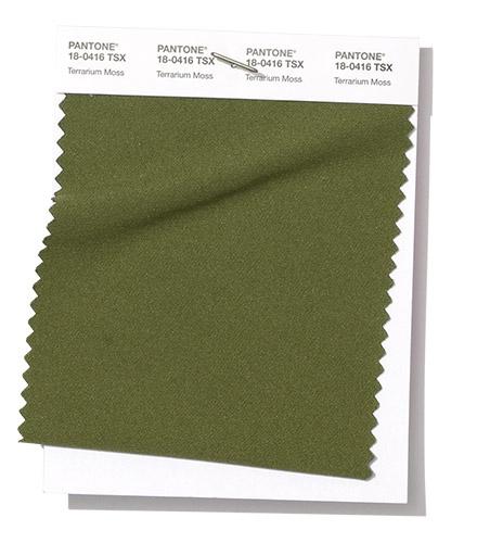 Pantone swatch Terrarium Moss