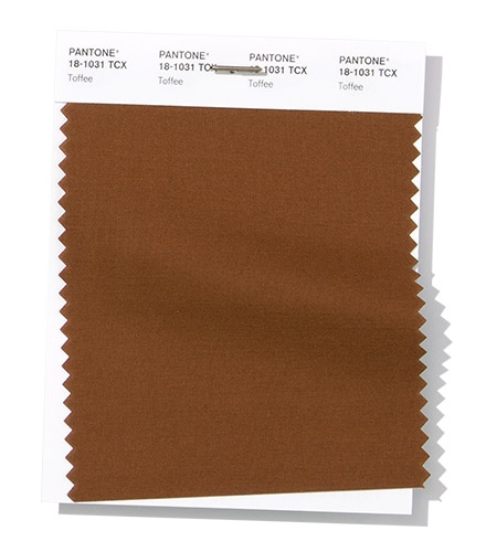 Pantone swatch Toffee