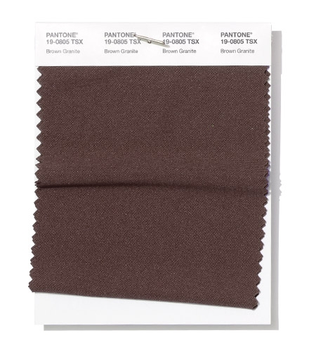 Pantone Swatch Brown Granite
