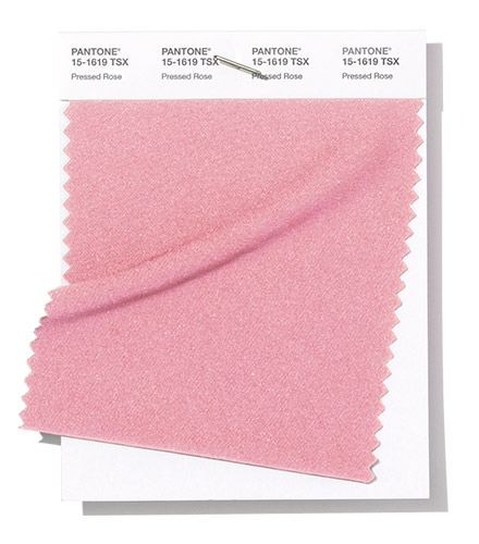 Pantone Swatch Pressed Rose
